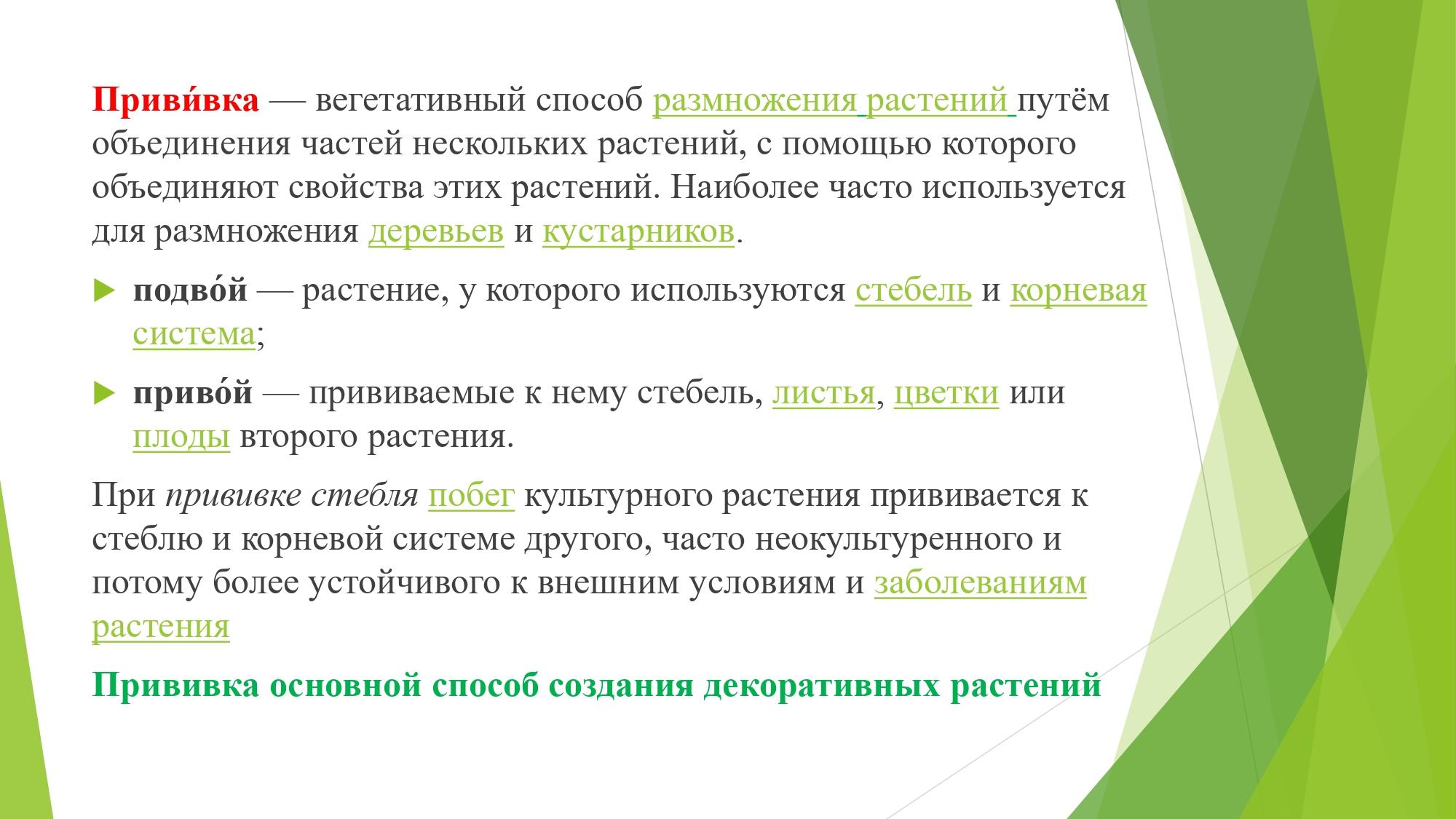 декорат.раст_page-0002