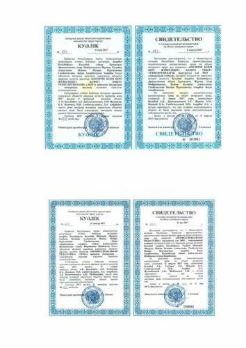 Патенты ПО-10